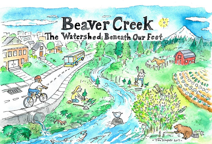 Beaver Creek Information