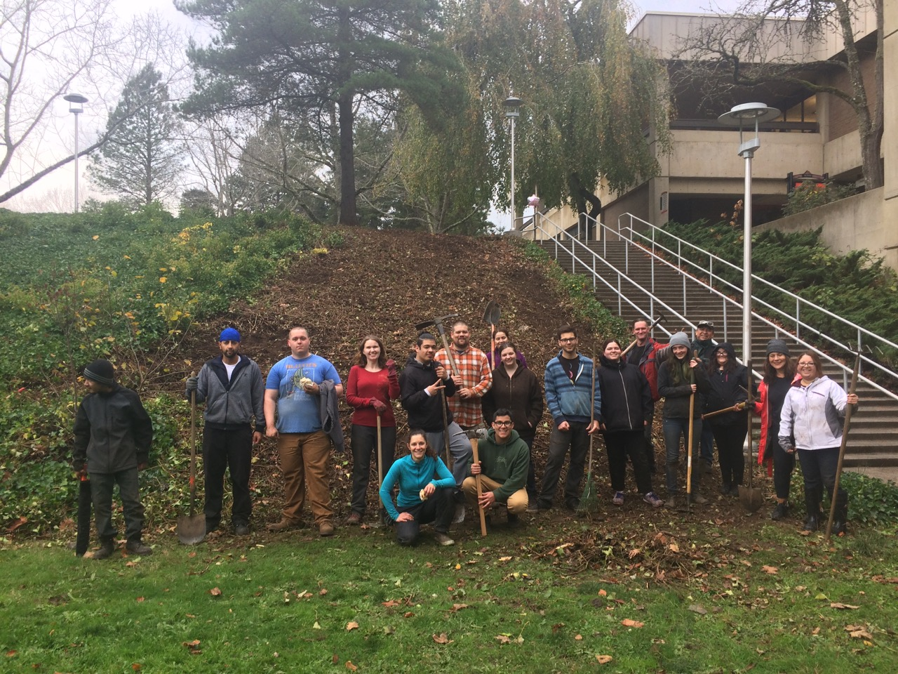 Ivy slope work party in November 2017.