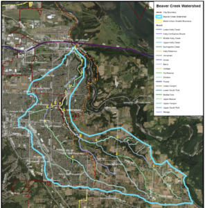 Beaver Creek Watershed Map