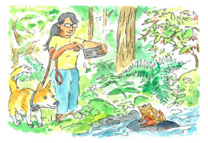 Drawing of taking photos outdoors