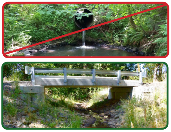 Good culvert versus bad culvert