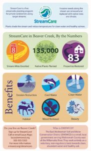 Streamcare infographic