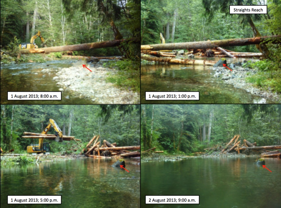 log jam installation on still creek