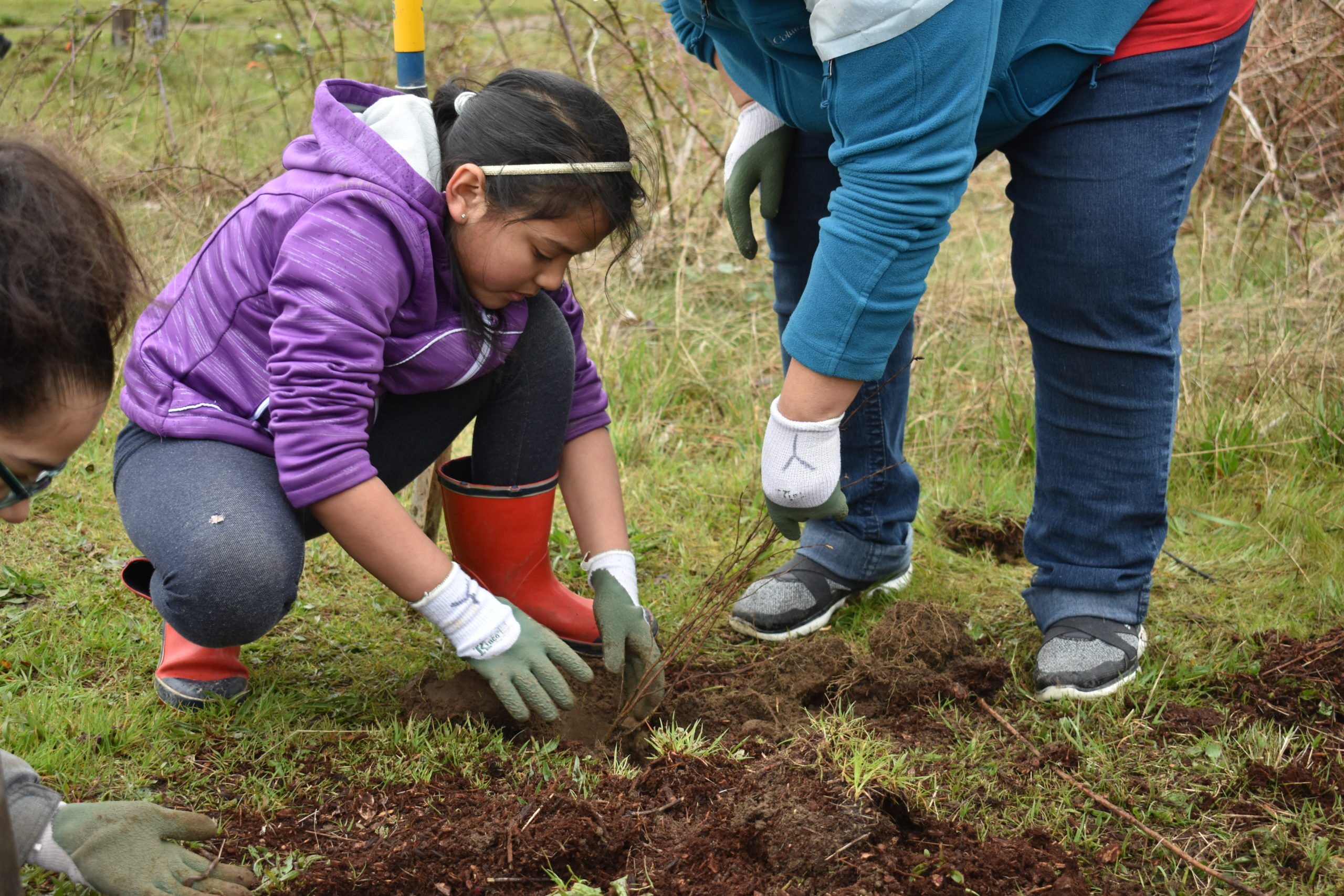 2018 Student planting day