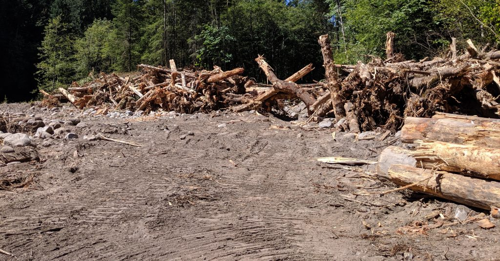 A log jam at the site of Phase 1 of the Sandy-Salmon Floodplain Reconnection Project