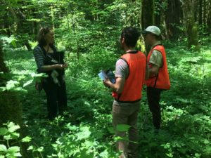3 people, 2 in orange safety vests, talking in a green, lush forest